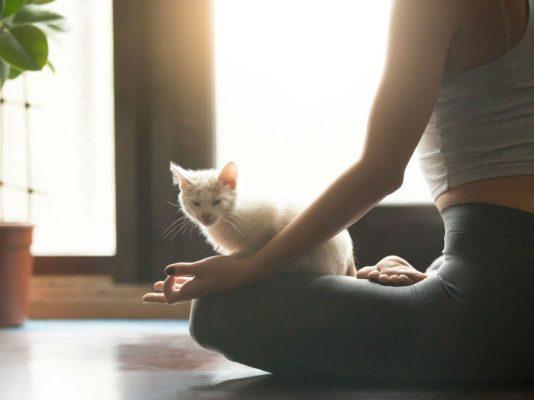 nouvelles-tendances-yoga