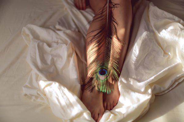 plume de paon femme