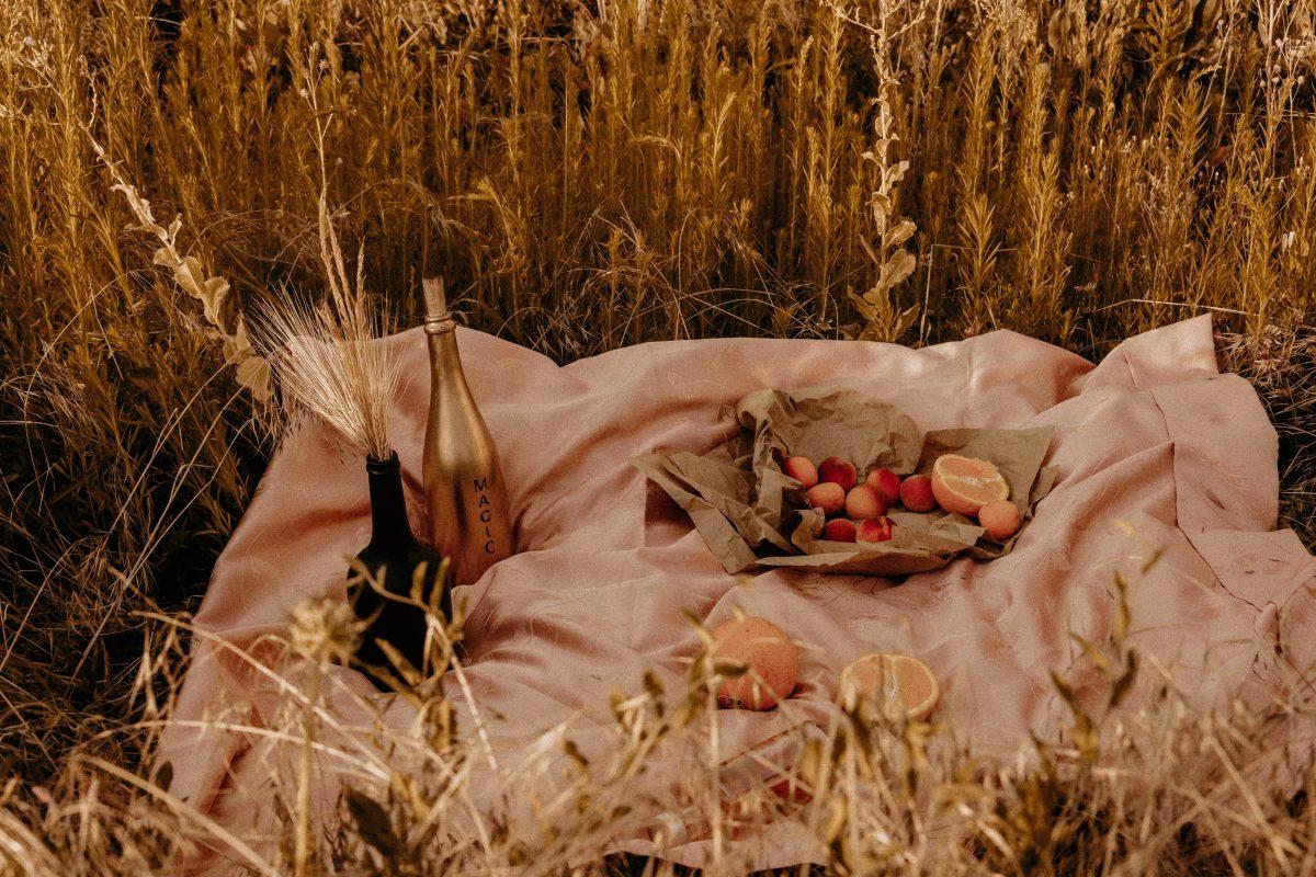pic-nique dans les champs de blé