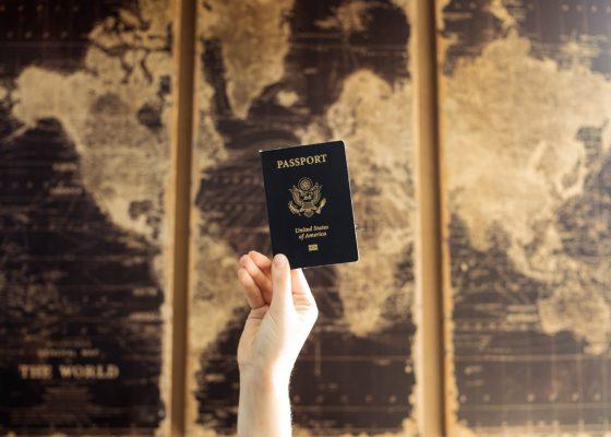 Passeport pour voyager revenge travel