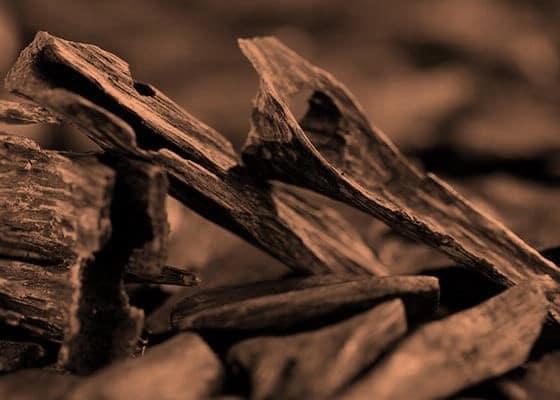 Branches-bois-santal-noir-dwyt-2