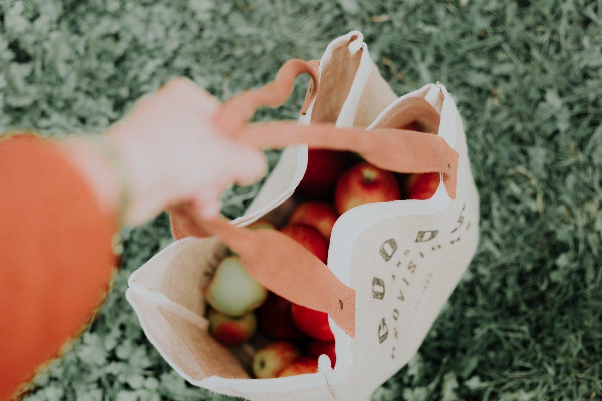 Le cuir de pomme comme matière écologique