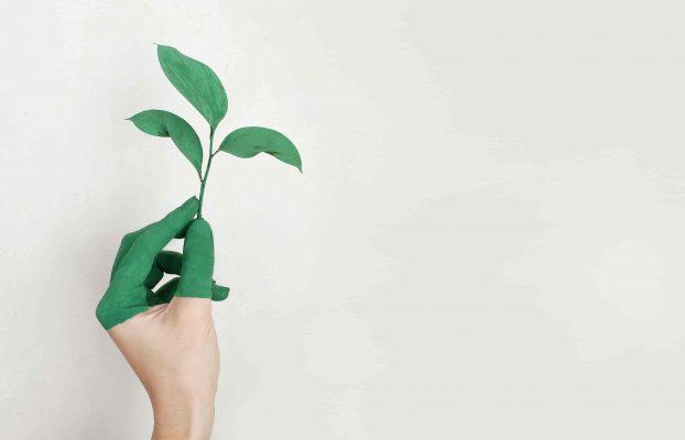 Participer à la durabilité environnementale